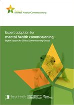 Expert adaption for mental health commissioning