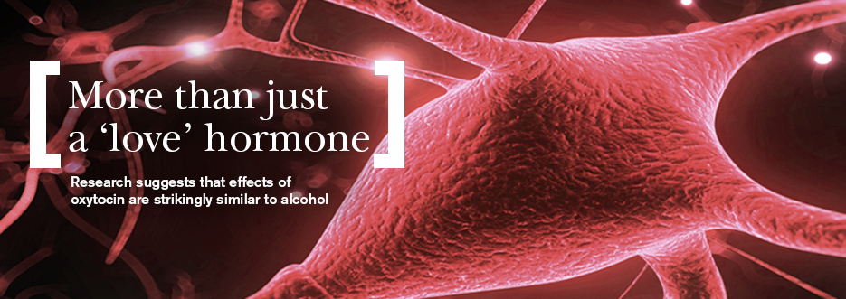 The dark side of the love hormone; research points to striking similarities with the effects of alcohol