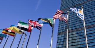 Line of flags outside a building  from different countries