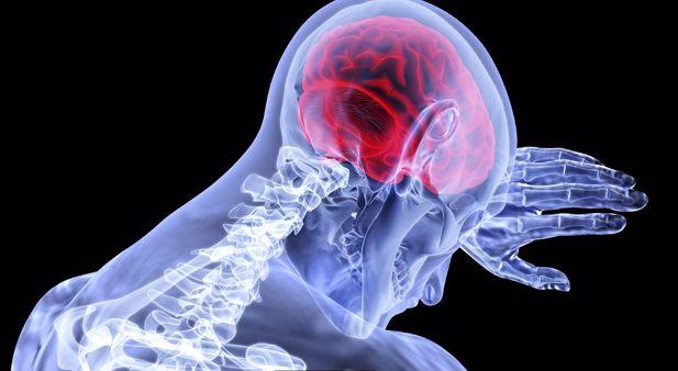 Brain 900