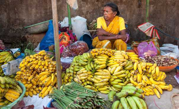 Woman selling ripen bananas at a market in India