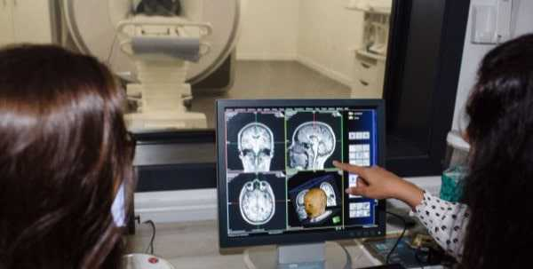 Brain scan on computer screen