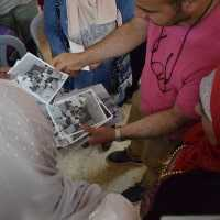 Volunteers looking through archive photographs