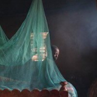 Child surrounded by malaria net