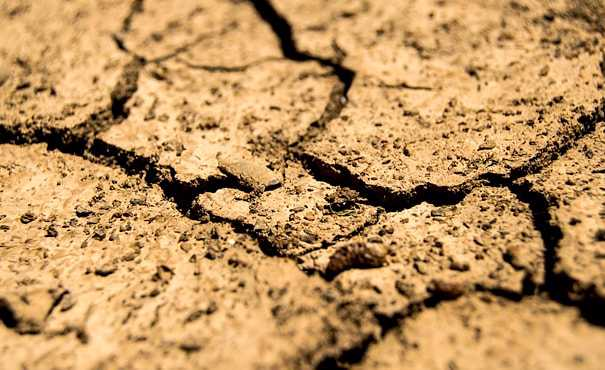 Padlocked tap in drought-hit landscape