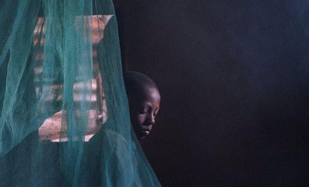 A boy in a mosquito net