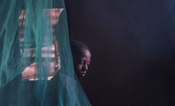 A boy in a mosquito net
