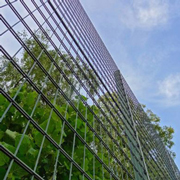 Increased green space in prisons can reduce self-harm and violence